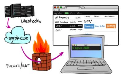 Ngrok for testing webhooks